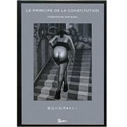La Principe De La Constitution