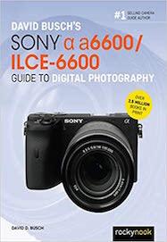 David Busch's Sony Alpha a6600/ILCE-6600 Guide