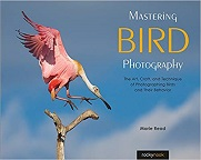 Mastering Bird Photography