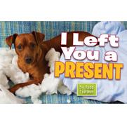 I Left You a Present