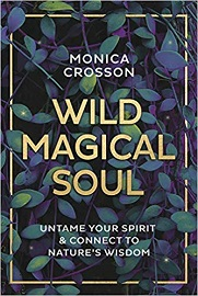 Wild Magical Soul